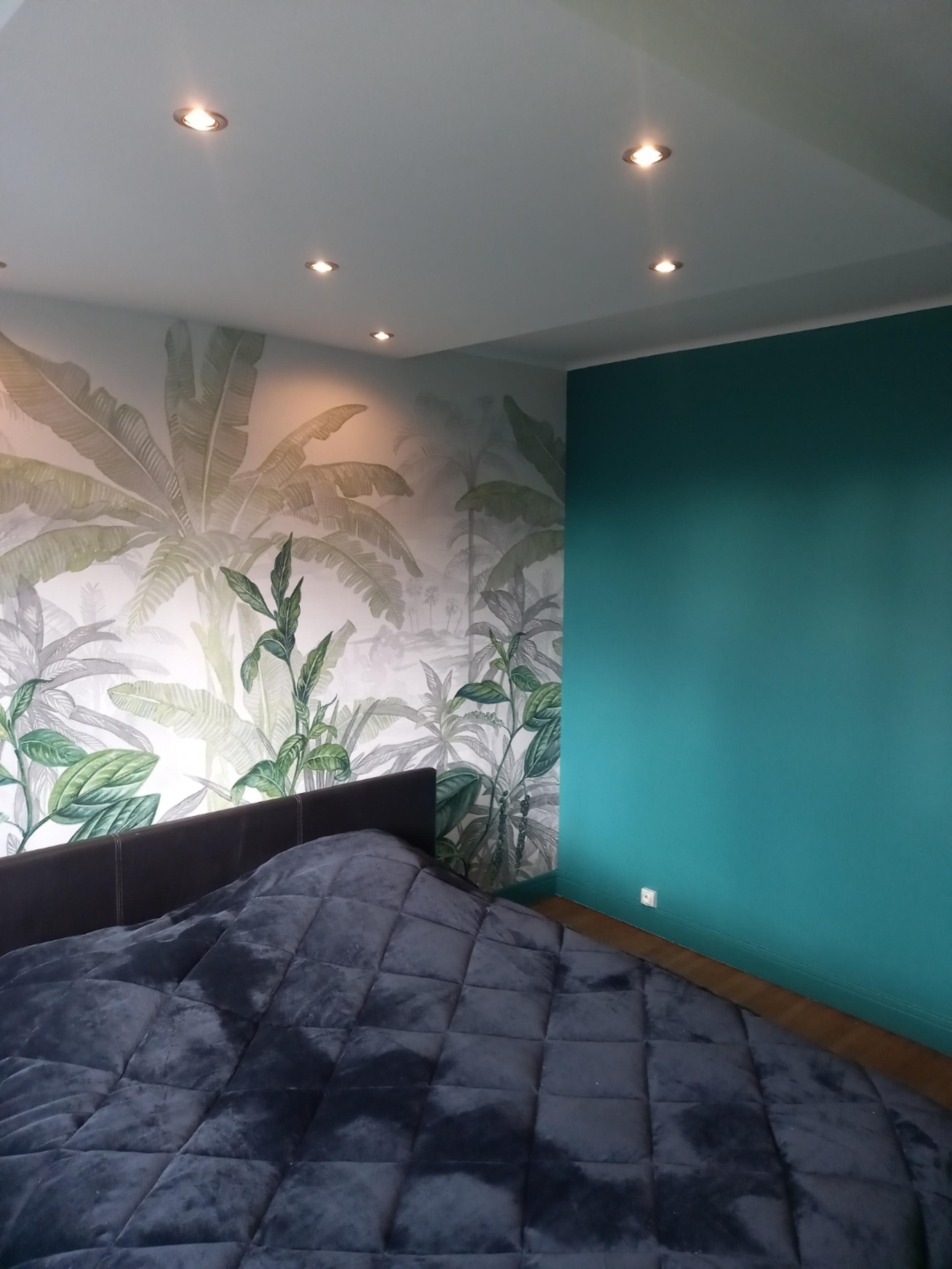 Peinture - Pose d''un panoramique - descente de plafond plus spots
