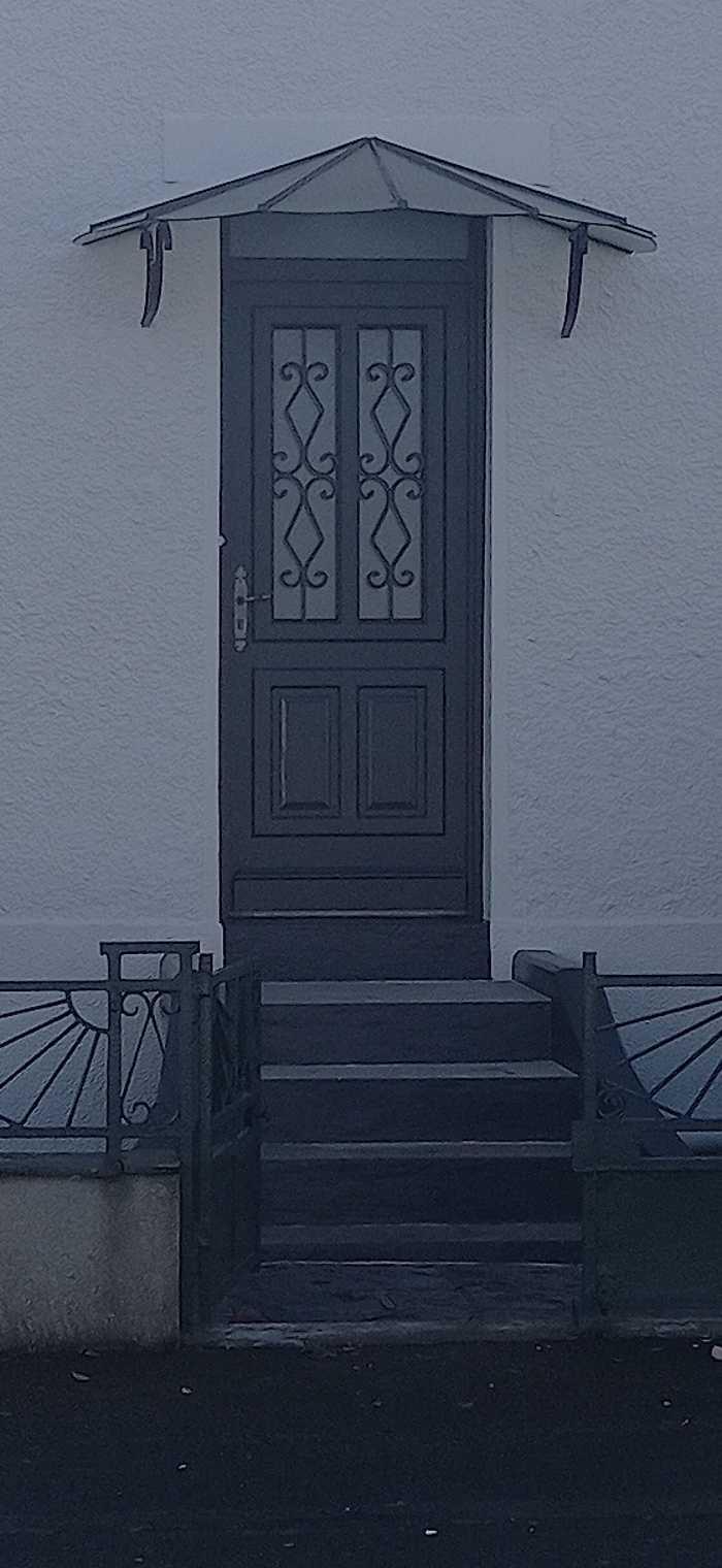 Peinture porte et marquise 0