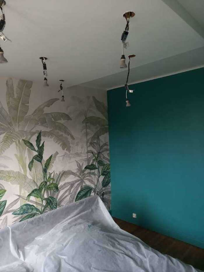 Peinture - Pose d''un panoramique - descente de plafond plus spots resized20210202102755